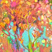 Kangaroo Flower In Spring Bubbles Poster