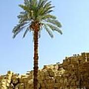 Karnak Temple 12 Poster