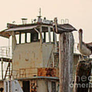 Katrina Ghost Boat And Pelicans Poster