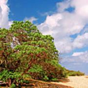 Kauai Beach Poster