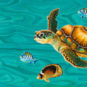 Kauila Sea Turtle Poster by Emily Brantley