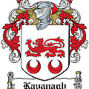 Kavanaugh Coat Of Arms Irish Poster