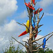 Kayak Tree Poster