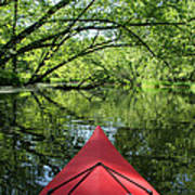 Kayaking Backwater Mississippi 1 Poster