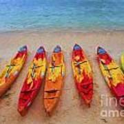 Kayaks at Manly Poster
