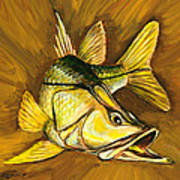 Kelly B's Snook Poster