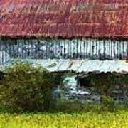 Kentucky Barn In Summer Poster