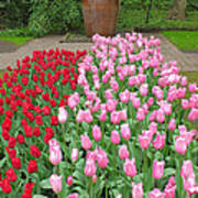 Keukenhof Gardens 1 Poster