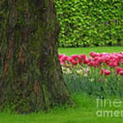 Keukenhof Gardens 23 Poster