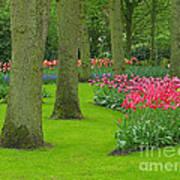 Keukenhof Gardens 60 Poster