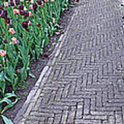 Keukenhof Gardens Panoramic 24 Poster