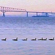 Key Bridge And Waterfowl Poster