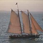 Sail Boat - Key West Florida Poster