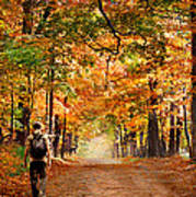 Kid With Backpack Walking In Fall Colors Poster