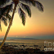 Kihei Palm Sunrise Poster