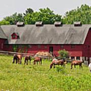 Kirtland Hills Farm 0722 Poster