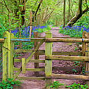 Kissing Gate Painting. Poster