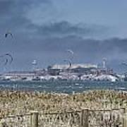 Kite Surfing Alcatraz Poster by Chuck Kuhn