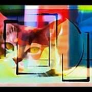 Kitty Eyes Poster