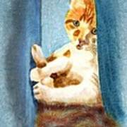 Kitty In A Corner Poster