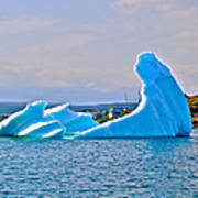 Kneeling Before The Queen Iceberg In Saint Anthony-newfoundland  Poster
