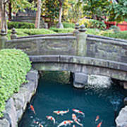 Koi Pond In Senso-ji Temple Grounds Poster