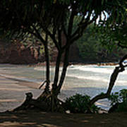 Koki Beach Hana Maui Hawaii Poster