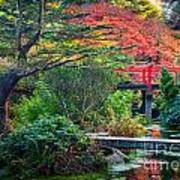 Kubota Gardens In Autumn Poster