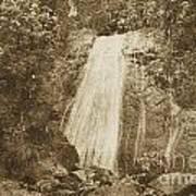 La Coca Falls El Yunque National Rainforest Puerto Rico Print Vintage Poster