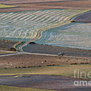 La Mancha Landscape - Spain Series-ocho Poster