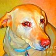 Labrador Painting Poster