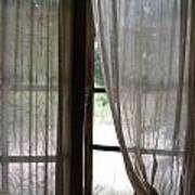 Lace Window Covering. Poster