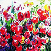 Laconner Tulips Poster