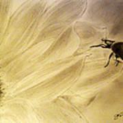 Ladybug On A Sunflower Poster