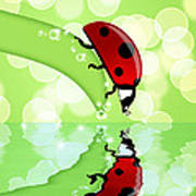 Ladybug On Leaf Looking At Water Reflection Poster