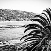 Laguna Beach California In Black And White Poster