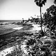 Laguna Beach Pacific Ocean Shoreline In Black And White Poster