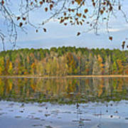 Lake Bailey Petit Jean State Park Poster