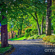 Lake Como Path Poster