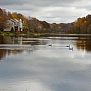 Lake Elkhorn Poster