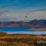 Lake Laberge And Surrounding Taiga In Fall Poster