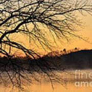 Lake Louise Sunrise Through The Trees Poster
