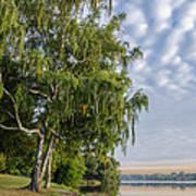 Lake Quannapowitt In Massachusetts  Poster by Pat Lucas