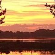 Lake Spivey Morning Poster