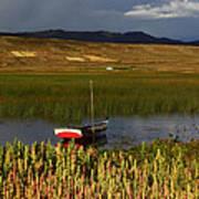 Lake Titicaca And Quinoa Field Poster
