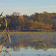 Lake Towhee In Autumn Poster