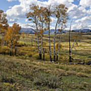 Lamar Valley In The Fall - Yellowstone Poster