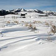 Lamar Valley Winter Scenic Poster