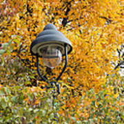 Lamp In The Autumn Leaves Poster
