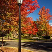 Lamp Post On The Corner Poster